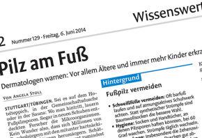 medien_print_stgtnach_062014