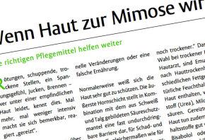 medien_print_stz_032012